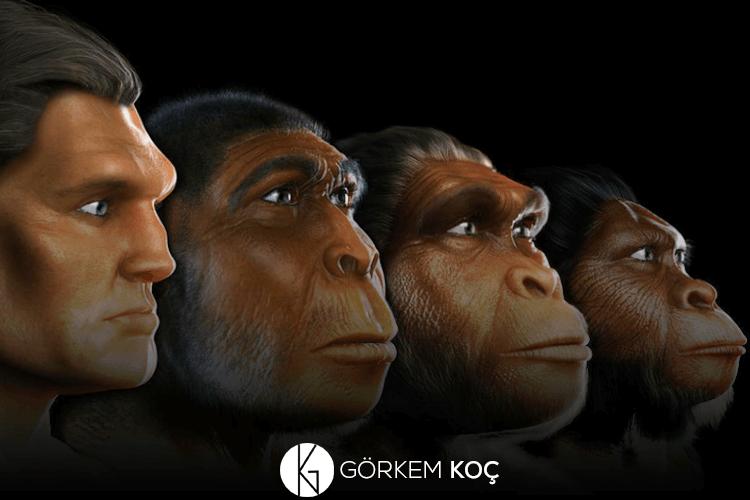 İnsan evriminin dijital modellemesi.